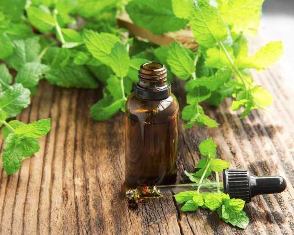 มาดูงานวิจัย Peppermint Essential Oil (น้ำมันหอมระเหยเปปเปอร์มิ้นท์) มีดีอย่างไรบ้าง